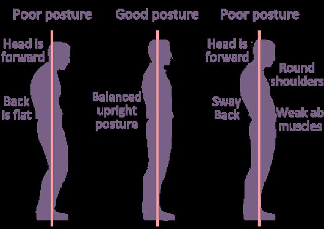 Schmidt Chiropractic Center Postural Classes